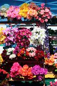 Various modifications of artificial flowers made ??of synthetic materials poster