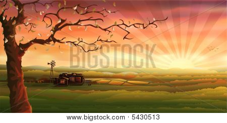 Farm In The Evening