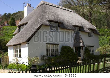 Thatched White Cottage