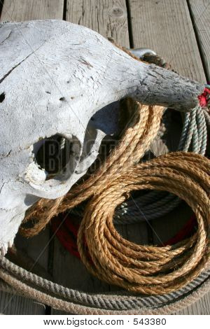 Rope Pile 5