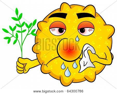 Pollen With Hay Fever