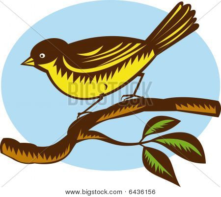 illustration of a New Zealand fantail bird on a branch done in retro woodcut style poster