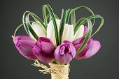 Beautiful bouquet with white and purple tulips poster