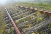 old rusty railroad vanishing in the morning fog poster