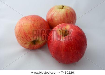 Apples Food Fruit Series