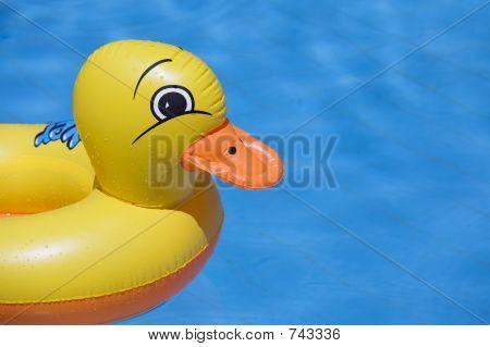 Duck0