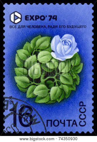 Vintage  Postage Stamp. Expo 74. Rose.
