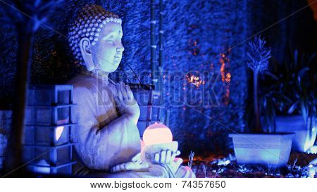 Quiet Buddah