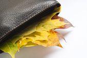 Autumn bounty purse, wealthy autumn comes around. poster