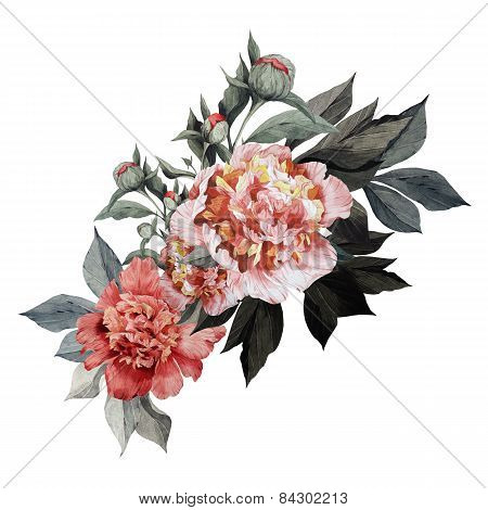 Bouquet Of Rosesiday And  Summer Background