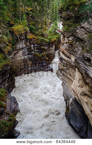 Athabasca Canyon, Jasper National Park
