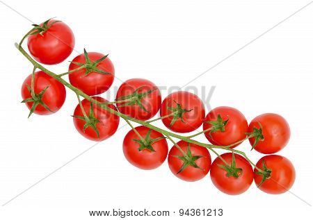 Fresh red cherry tomatoes on a branch