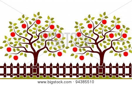 Apple Tree Orchard Border