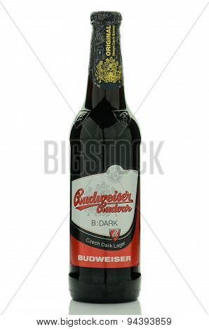 Budweiser dark lager beer isolated on white background.