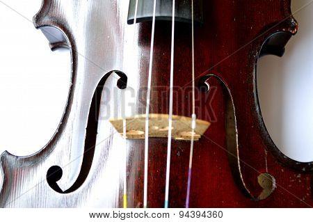 Antique Violin Closeup, White Background