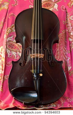 Antique Violin On Pretty Background Vertical.