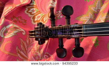 Violin Scroll On Pink, Letterbox