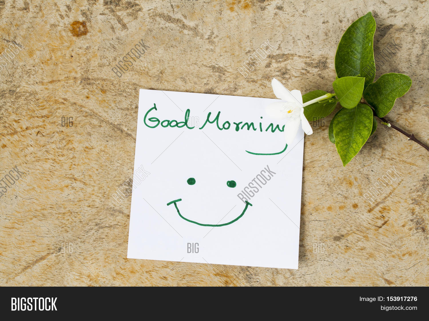 Good morning message image photo free trial bigstock good morning message card greeting and white flowers on background old wood mightylinksfo