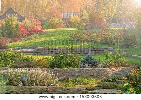 Beautiful autumn landscape with green lawns retaining walls flower beds and a fragment of an alpine slide on the background of yellow leaves of birch trees on a sunny October day sun glare