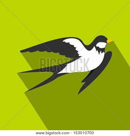 Swallow icon. Flat illustration of swallow vector icon for web isolated on lime background