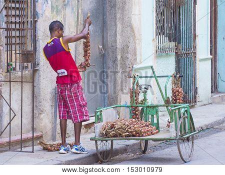 HAVANA CUBA - JULY 18 : A Cuban onion seller in old Havana street on July 18 2016. The historic center of Havana is UNESCO World Heritage Site since 1982.