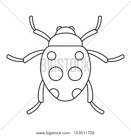 Ladybug icon. Outline illustration of ladybug vector icon for web