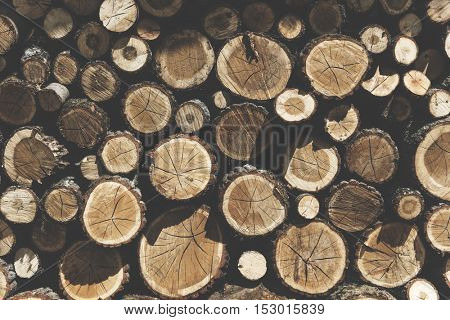 Lumber TImber Trunk Firewood Woodpile Logging Concept