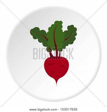 Turnip icon. Flat illustration of turnip vector icon for web
