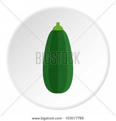 Zucchini icon. Flat illustration of zucchini vector icon for web