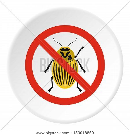 Prohibition sign colorado beetles icon. Flat illustration of prohibition sign colorado beetles vector icon for web