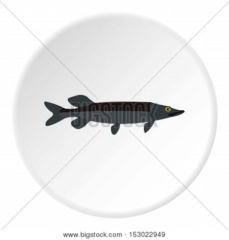 Pike fish icon. Flat illustration of pike fish vector icon for web