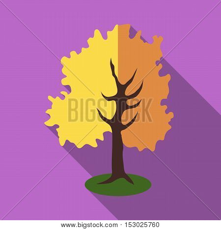 Tall tree icon. Flat illustration of tall tree vector icon for web