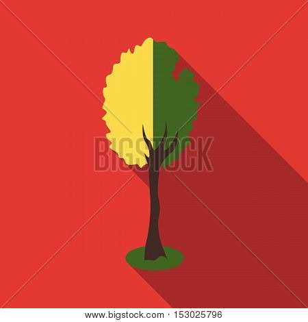 Fluffy tree icon. Flat illustration of fluffy tree vector icon for web