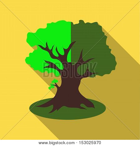 Thick tree icon. Flat illustration of thick tree vector icon for web