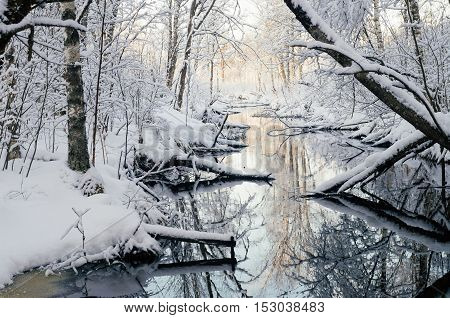 Small river in fairytale snowy forest by winter morning