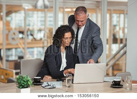 Mature businessman and young work colleague talking together and working on a laptop while working at a table in an office boardroom