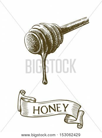 Dipper stick with dripping honey. Vector sketch on a white background