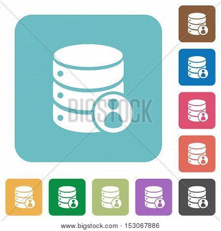 Database privileges flat icons on color rounded square backgrounds