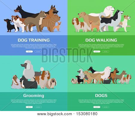 Dog walking, training, grooming banners set. Group of different breeds dogs stand on color background. Dogs banner with space for text. Dogs professional services. Cartoon dog character, pet animal.