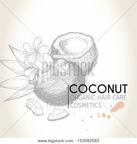 Vector set of hair care ingredients. Organic hand drawn elements. Coconut and leaves. Use for cosmetic package shop store products spa salon wellnes program procedure skin hair care