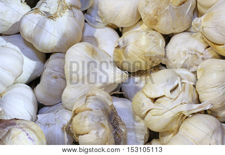 Many Background Cloves Of Garlic For Sale