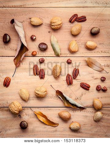 Various kinds of nutshell walnuts kernels hazelnuts almond kernels and pecan with dried leaves set up on rustic wooden background.