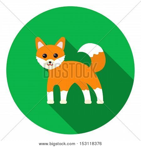 Fox icon in flat style isolated on white background. Animals symbol vector illustration.