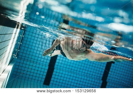 Young Man Swimming The Front Crawl In A Pool.