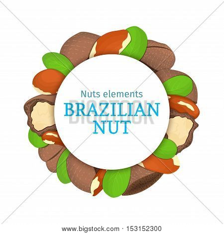 Round colored frame composed of brazil nut. Vector card illustration. Circle nuts frame, brazilian nut fruit in the shell, whole, shelled leaves appetizing looking for packaging design of healthy food