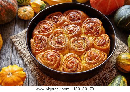 Cinnamon pumpkin dough bun rolls spicy traditional Danish baked vegan sweet fall treat cake holiday dessert swirl bread pastry food with raw pumpkins on vintage wooden table background.