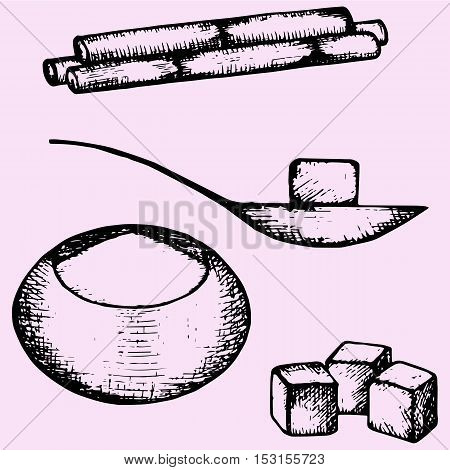 sugarcane, refined white sugar, spoon, sugar-bowl, cubes set doodle style sketch illustration hand drawn vector