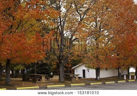 Gorgeous autumn tree foliage at Sainte Anne Du Bocage Sanctuary on the outskirts of Caraquet shows off the bright fall colours tiny cottage and park tables on a slightly overcast but bright day in October. The Sanctuary was founded in 1755 and is part of