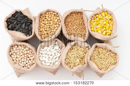 bags with cereal grains (oat barley wheat corn beans peas soy sunflower)