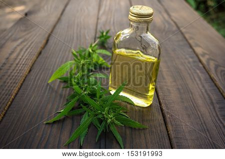 Leaves of cannabis and bottle of hemp oil on dark wooden surface. Hemp products. Agricultural technical culture